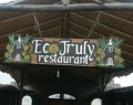 ecotrulyp20