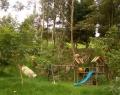 jardines_bosques_y_caminos0481