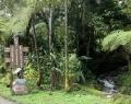 Vrindavan Rio Negro 8 febr (56)