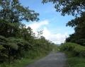 Vrindavan Rio Negro 8 febr (57)