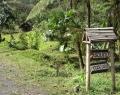 Vrindavan Rio Negro 8 febr (75)